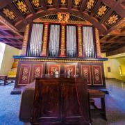 organy portal.jpg